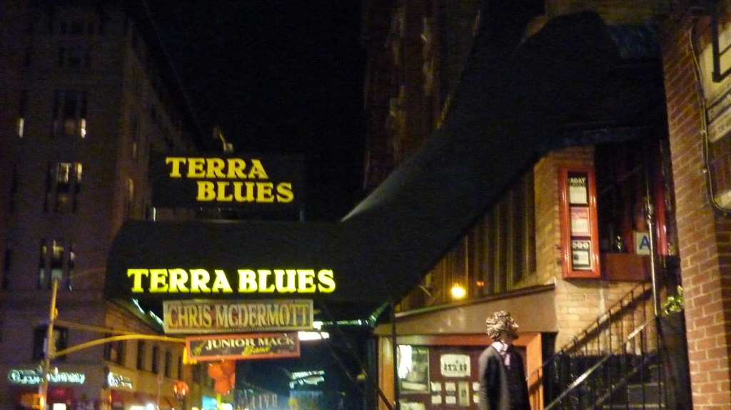 New York City - Terra Blues